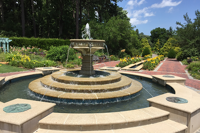 Carbon Emission Reduction: An Interview with Norfolk Botanical Garden